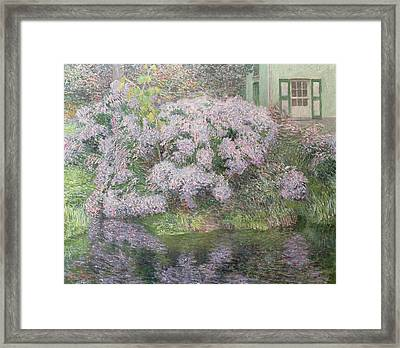 Hydrangeas On The Banks Of The River Lys Framed Print by Emile Claus