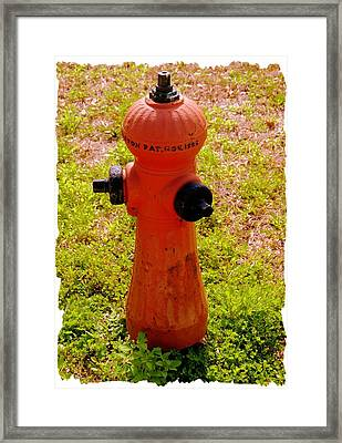 Hydrant 1885 Framed Print by Andrew Armstrong  -  Mad Lab Images