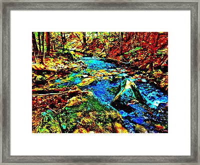 Hyper Childs Brook Z 5 Framed Print