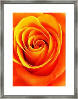 Hypnotic Orange Framed Print