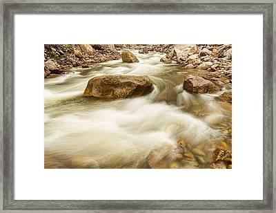Hypnotized By A Rocky Mountain Stream Framed Print by James BO  Insogna