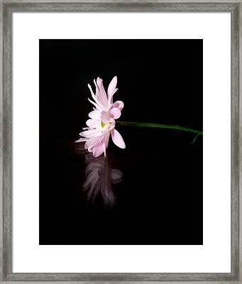 I Alone Framed Print
