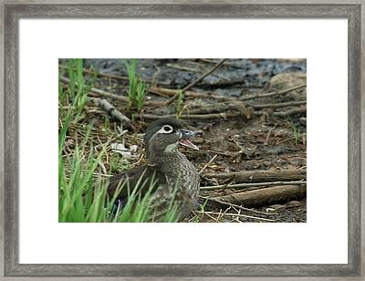 I Am Beautiful, No Matter What They Say Framed Print by Asbed Iskedjian