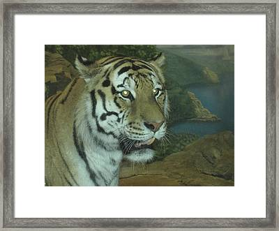 Framed Print featuring the photograph I Am Beautiful by Tammy Sutherland