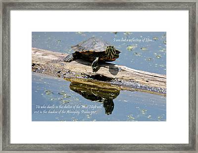I Am But A Reflection Framed Print
