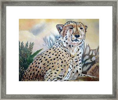 I Am Cheetah 2 Framed Print