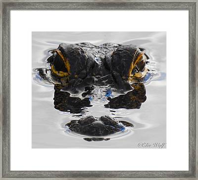 I Am Gator Framed Print