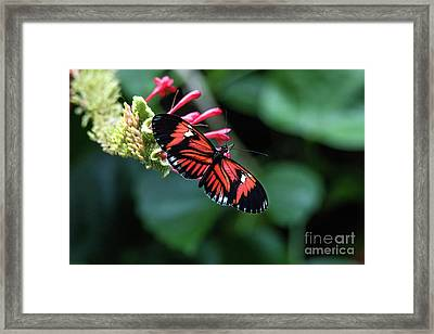 I Am Pretty Framed Print