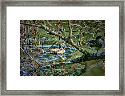 I Am Pritty #h9 Framed Print
