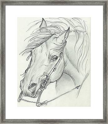 I Am Ready Framed Print by Lilly King