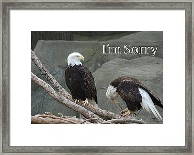 I Am Sorry Framed Print by Michael Peychich