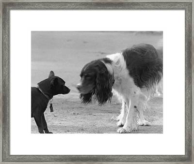 I Am The Flash Framed Print