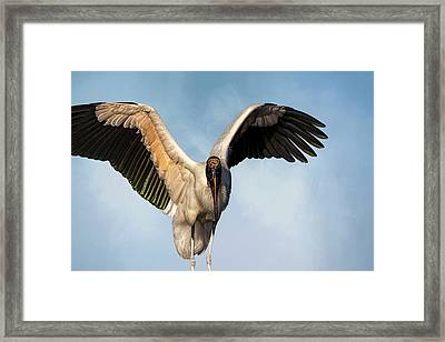 I Am The Great, And Powerful Oz Framed Print by Cyndy Doty