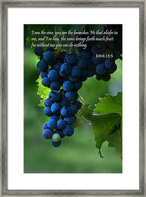 I Am The Vine Framed Print by Ann Bridges