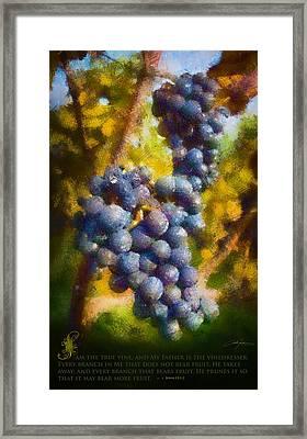 I Am The Vine Framed Print