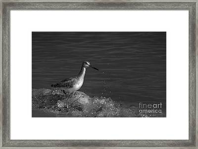 I Can Make It - Bw Framed Print by Marvin Spates