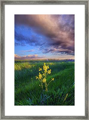 I Can See You When I Close My Eyes Framed Print by Phil Koch