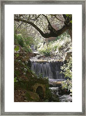I Could Sit Here All Day Framed Print by Jez C Self