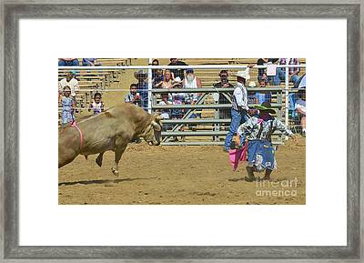 I Do Believe This Bull Is Fitting To Come After Me Framed Print by Debby Pueschel