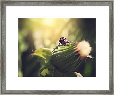 I Do Framed Print