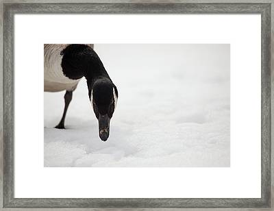 I Do See You Framed Print