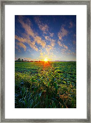I Don't Live To Be Framed Print by Phil Koch