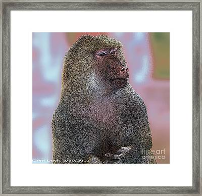 I Don't Need No Bling Framed Print