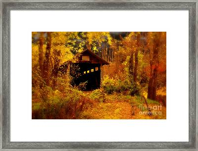 I Double Dog Dare Ya Framed Print by Lois Bryan