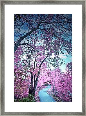 I Dream In Pink 2 Framed Print