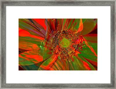 I Dreamed Of Flowers  Framed Print by Jeff Swan