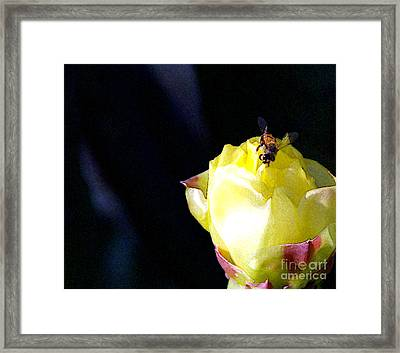 I Feel You Always Near Framed Print