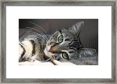 I Get Lost In Your Eyes Framed Print by Heather King