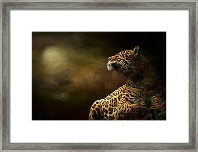 I Have A Dream Framed Print by Sandy Oman