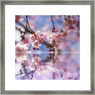 I Have A Dream Framed Print by Tanja Riedel