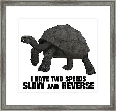I Have Two Speeds, Slow And Reverse Framed Print