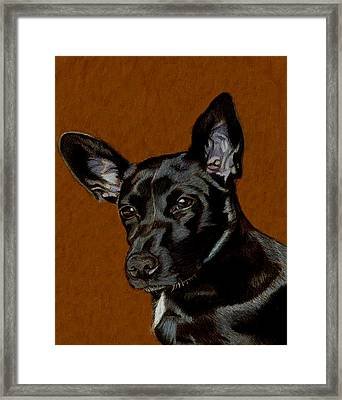 I Hear Ya - Dog Painting Framed Print by Patricia Barmatz