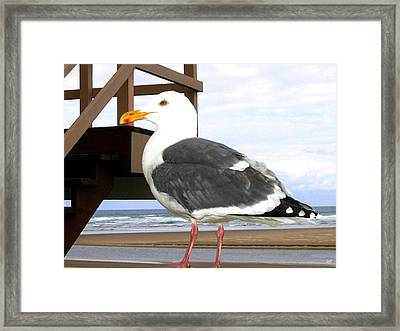 I Hope Lunch Is Ready Framed Print