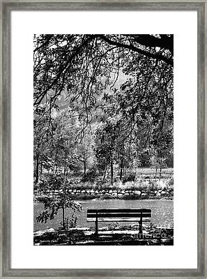 I Just Want Some Peace Framed Print