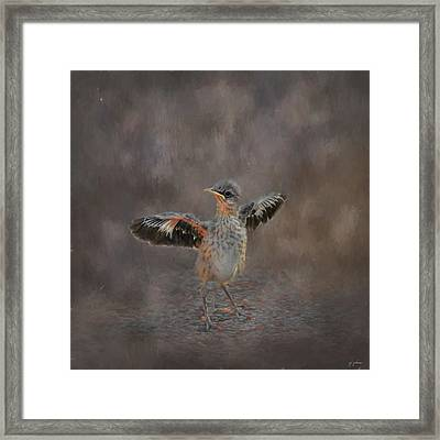 I Know I Can Fly Framed Print
