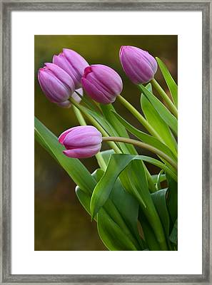 I Love Pink Framed Print by Ann Bridges