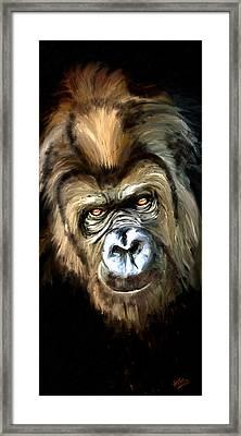 Gorilla Portrait Framed Print by James Shepherd