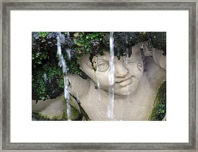 I M Dry Framed Print by Jez C Self