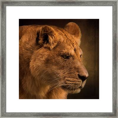 I Promise - Lion Art Framed Print