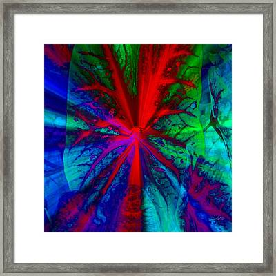 I Promised You Colors Framed Print by Fania Simon