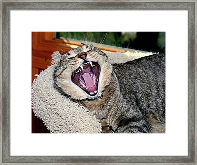 I Said Be Quiet Framed Print