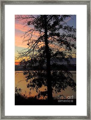 I Saw Her Standing There - Silhouette Of A Dream  Framed Print