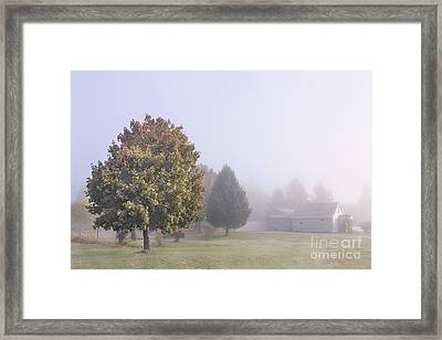 I Scent The Morning Air Framed Print