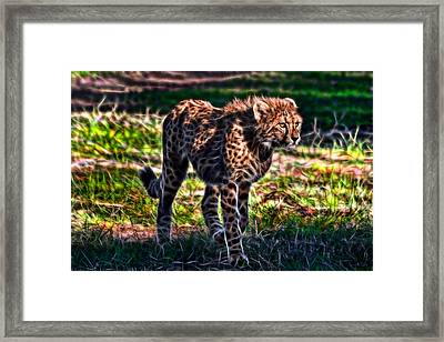 I See Food...maybe Framed Print
