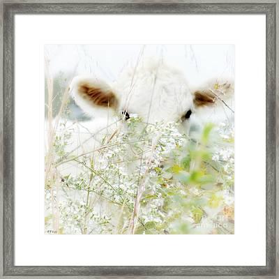 I See You 2 Framed Print by Anita Faye
