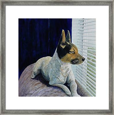 I See You Framed Print by Don Bosley